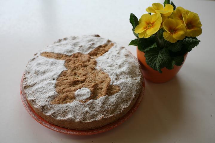 jarni-dort