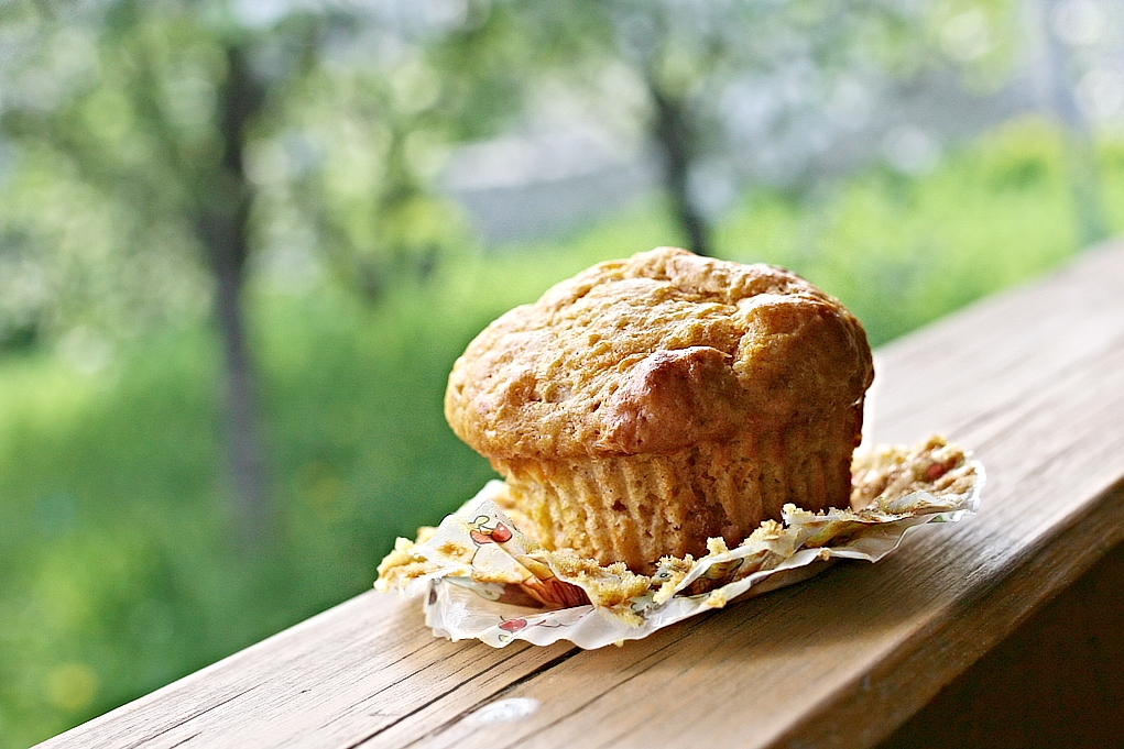 muffiny-mrkev-deti