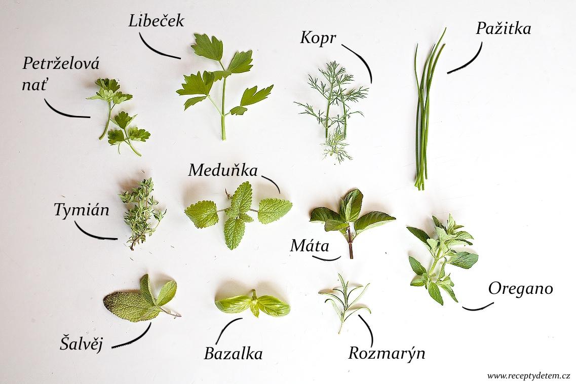 bylinky-v-kuchyni