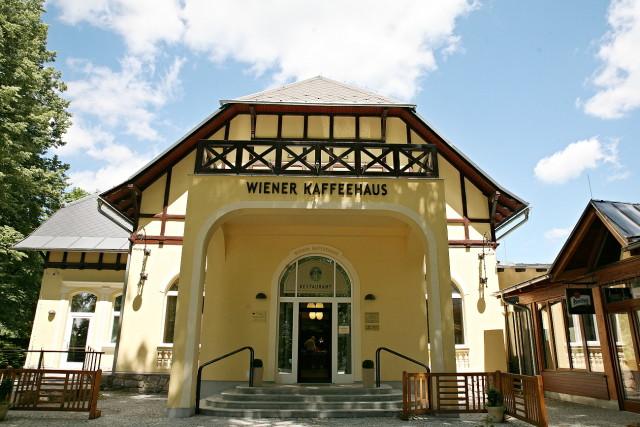 wiener_kaffeehaus