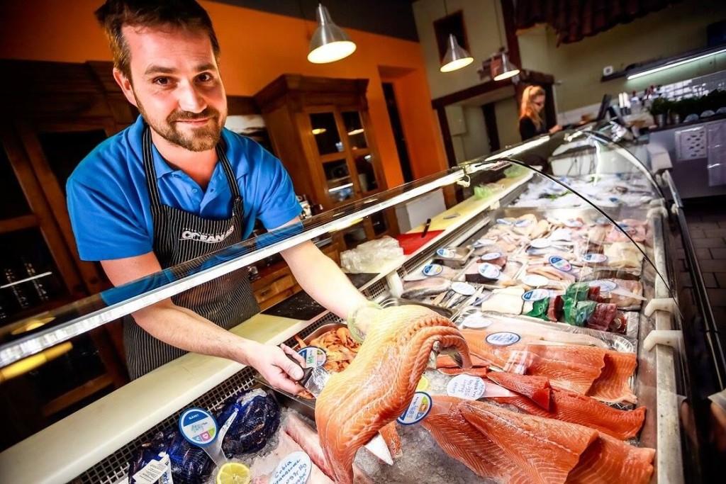 ryby - prodej - ocean