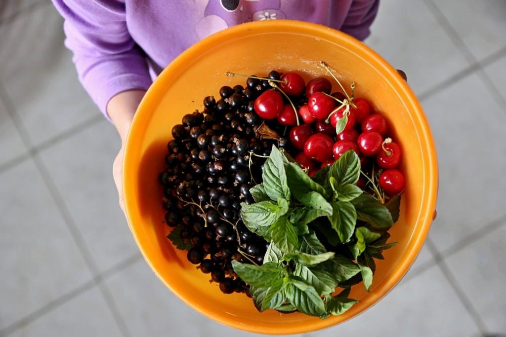 letní ovoce recept