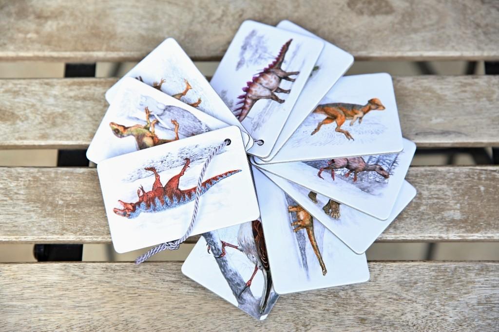 dinosauri-karty