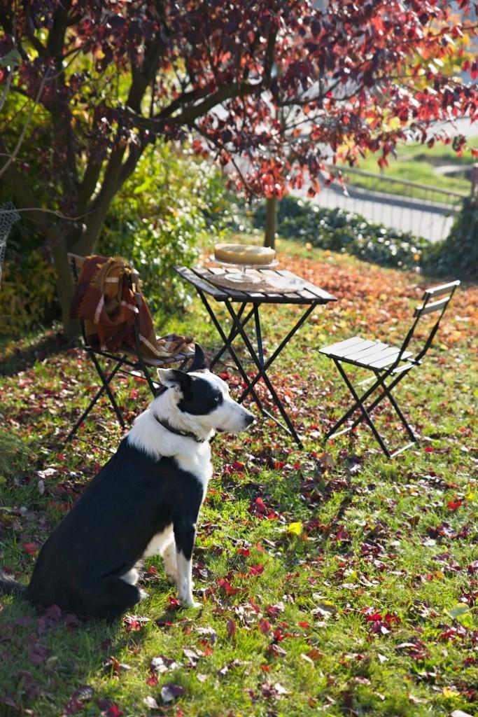 podzimni-recepty