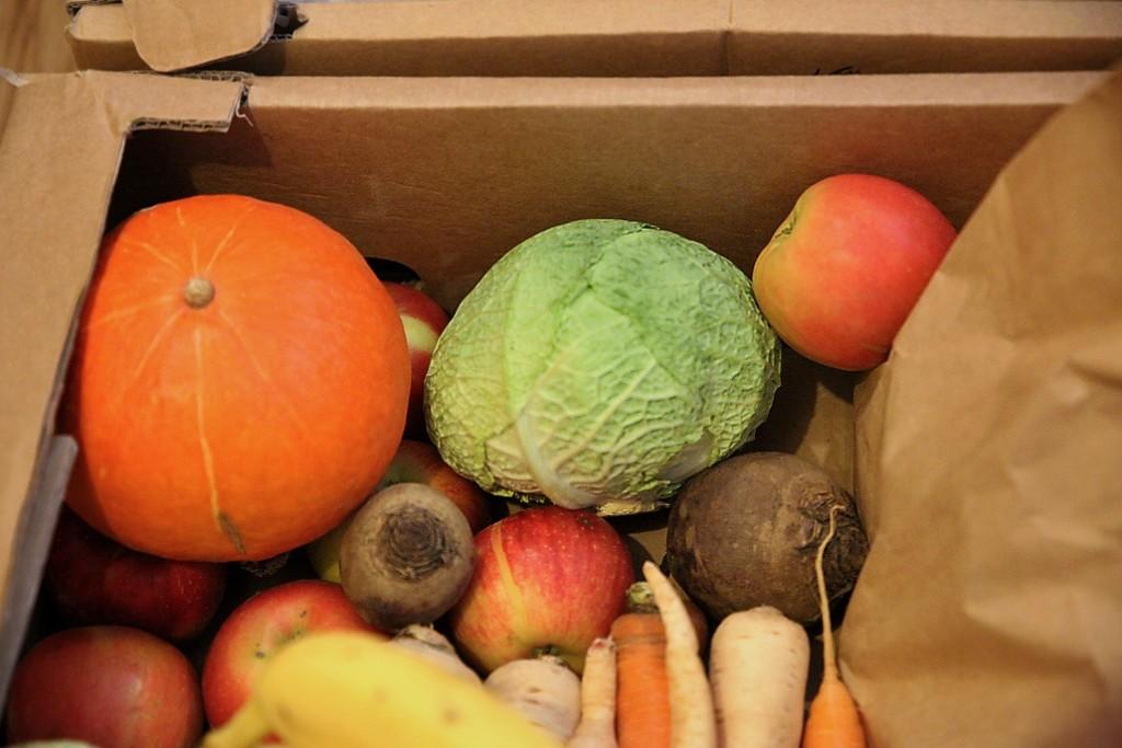 zelenina-prvni-prikrmy